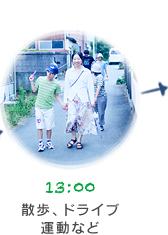 13:00 散歩、ドライブ、運動など